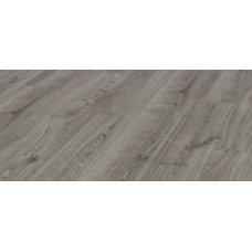 Robusto D3571 Дуб Таймлесс серый